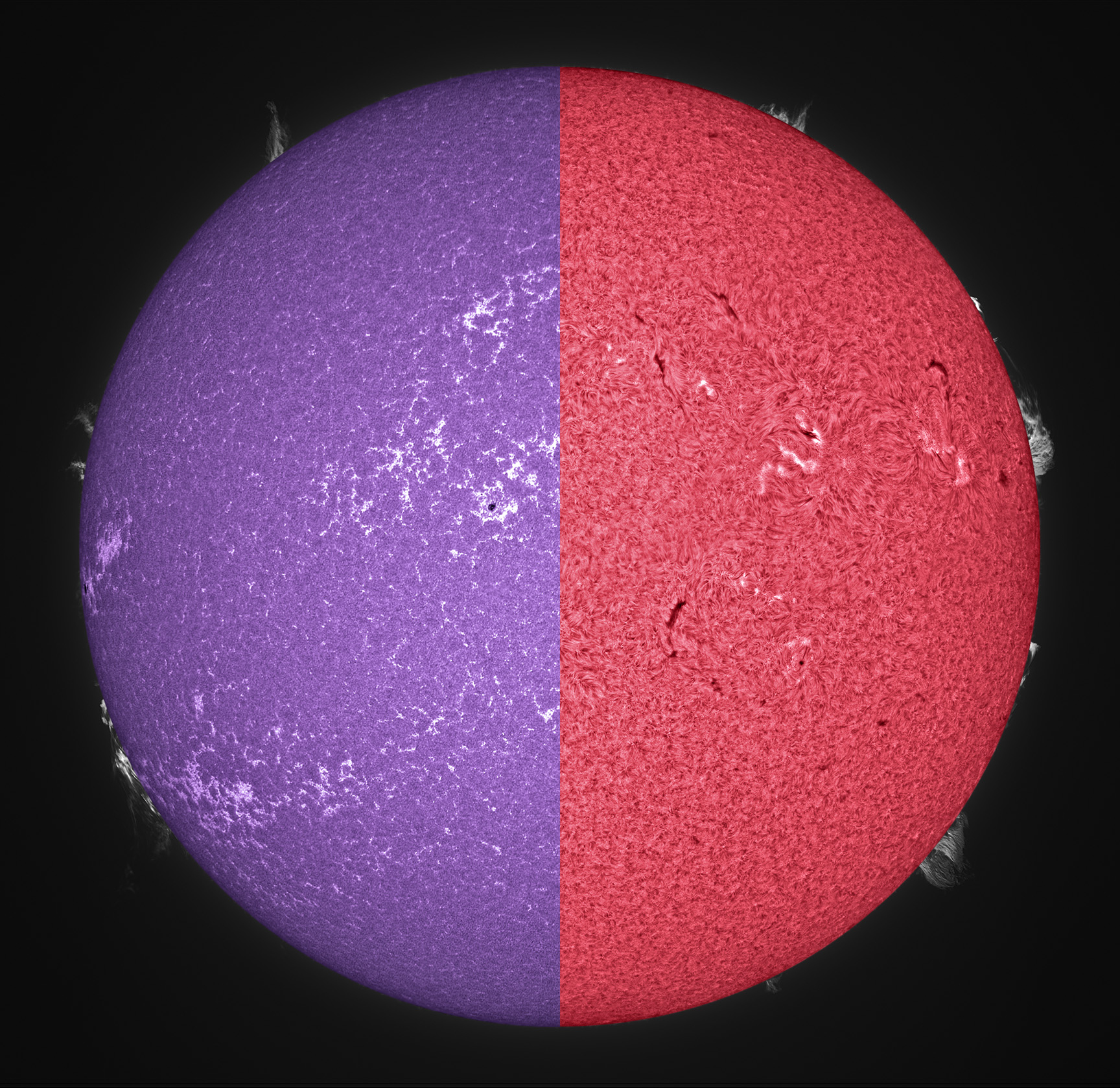 The Sun as seen through calcium K (blue) and hydrogen alpha (red) filters (image courtesy Alan Friedman)